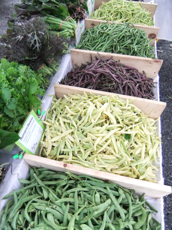 Green beans and wax beans